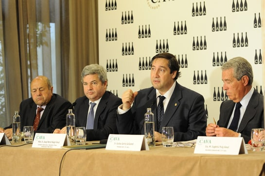 El presidente del Consejo Regulador del Cava, durante la presentación de los resultados de 2012