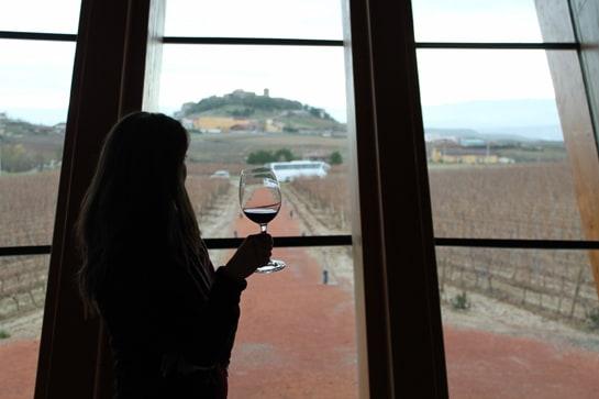 Vista de los viñedos desde la bodega Ysios, en la Rioja Alavesa / Juan Carlos Morales
