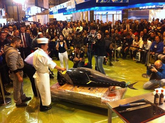 Espectacular la demostración de arte ancestral del ronqueo del atún