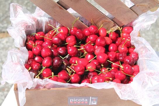Las primeras cerezas del Jerte llegarán a los mercados en los próximos días / JC Morales