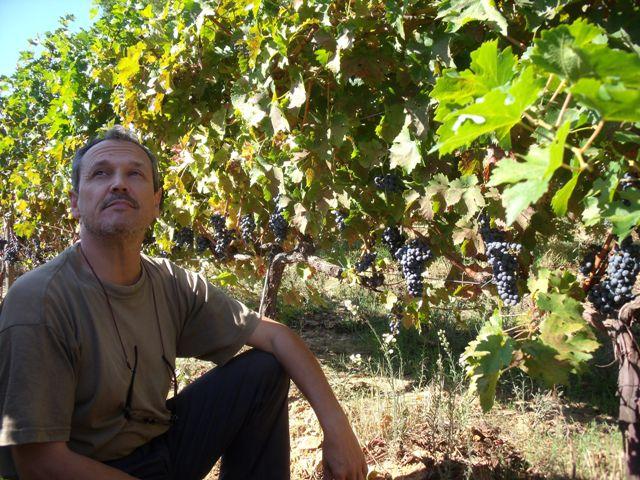 Josep Trallero, enólogo de Bell Lloc, explica las bondades de sus viñedos. /A.Moreno