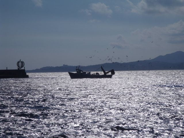 Palamos pesquero Emporda