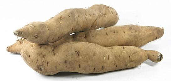 La raíz del boniato es lo más apreciado como alimento