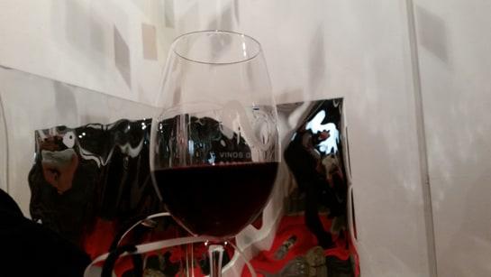 Más de 40 bodegas estuvieron presentes con sus vinos en la Ciudadela